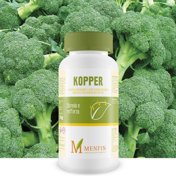 Kopper - Menfin
