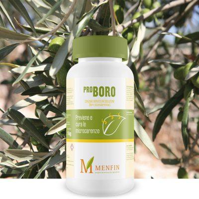 Pro-Boro - Menfin