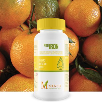 Pro-Iron - Menfin