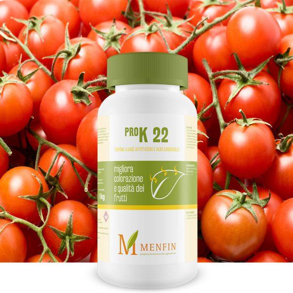 Pro K 22 - Menfin