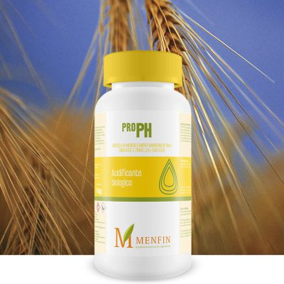 Pro-Ph - Menfin