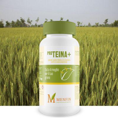 Pro-Teina + - Menfin