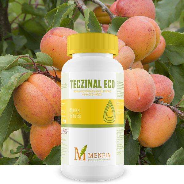 Teczinal Eco - Menfin