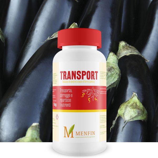 Transport - Menfin